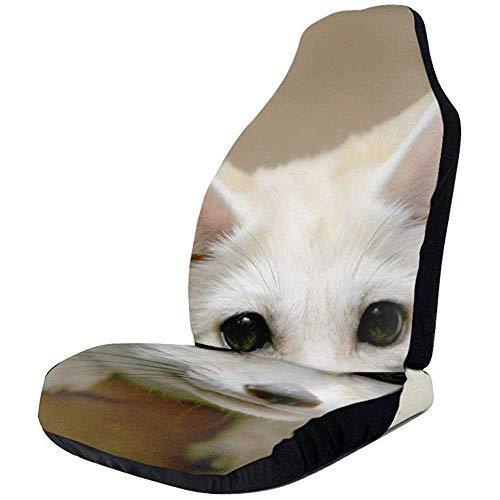 TABUE 2 stuks autostoelhoezen complete set - stoelhoezen voor huisdieren, autostoelhoezen voor de meeste auto's, vrachtwagens, SUV's of kleine bussen