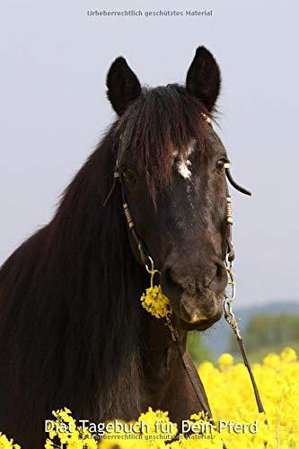 Diät Tagebuch für Dein Pferd: Softcover, übersichtliche Vorlage, 120 Seiten