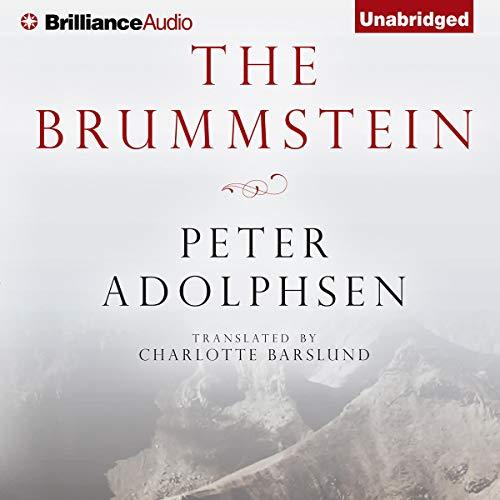 The Brummstein cover art