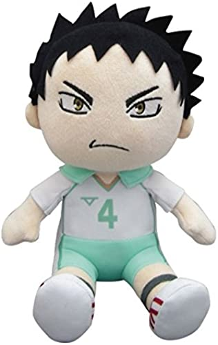 The Information stuffed Iwaizumi sitting height of about 20cm in Haikyu