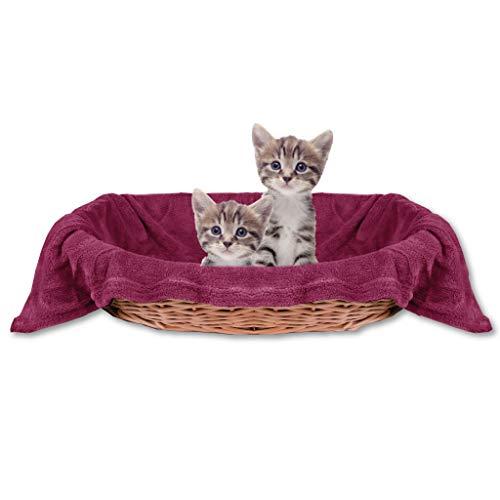 Bestlivings Haustierdecke Katzendecke Kuscheldecke Tierdecke, angenehm und super weich in vielen erhältlich (60x80 cm/Pflaume - Beere)