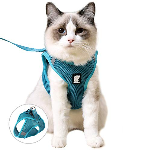 FDOYLCLC Cat Chest Adjustable Escape Proof Harness with Leash Set for Walking, Cat Best Vest Travel Outdoor Jacket, Comfortable Soft Mesh Cat Harness...