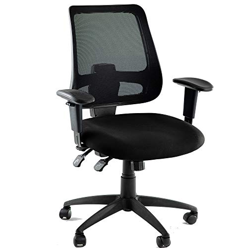 Office Chair with Multiple Adjustment Points Executive Swivel Ergonomic High-Back Task Computer Chair with Arms and Lumbar Mesh Support Desk Chair,Black