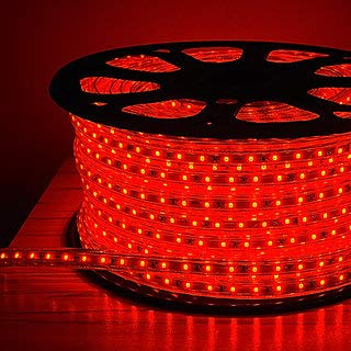 Errol LED Strip Rope Light,Water Proof,Decorative led Light with Adapter (4 Meter, Red)