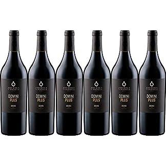 6x-Domini-Plus-2015-Weingut-Jose-Maria-da-Fonseca-Douro-Rotwein
