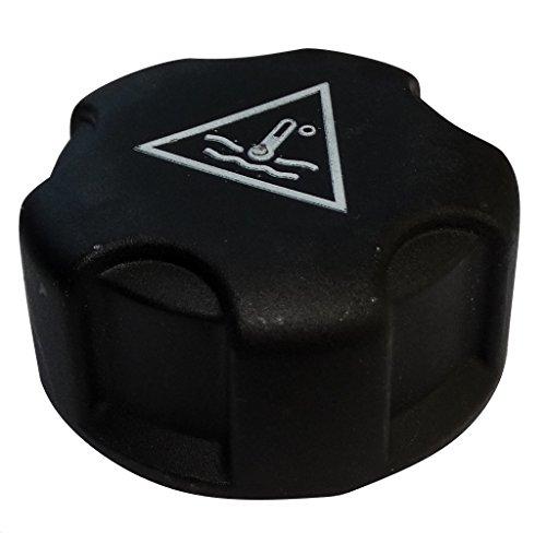 AERZETIX: Tapon del deposito de liquido refrigerante C40074 compatible con 1306.J5 17117639024