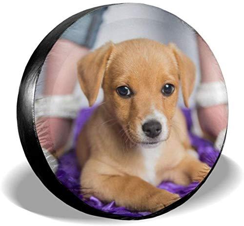 MODORSAN Perro Animales Cubierta de neumático de Rueda de Repuesto Cubiertas de Rueda universales de poliéster para Jeep Trailer RV SUV Accesorios de camión, 16 Pulgadas