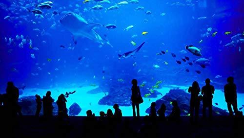 Puzzel 1000 Stukjes,Aquarium,Puzzeltjes Voor Volwassenen En Kinderen Voor Familie, Educatief Speelgoed Voor Volwassenen Vrienden Verjaardagscadeau