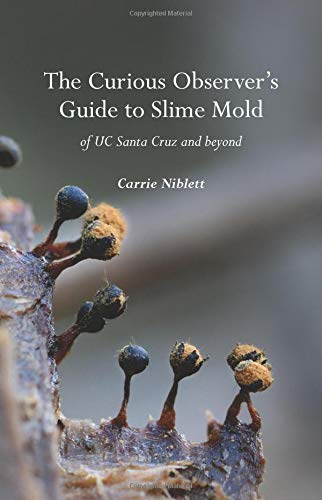 The Curious Observer's Guide to Slime Mold of UC Santa Cruz and Beyond