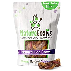 Nature Gnaws Braided Bully Stick Bites for Small Dogs – Premium Natural Beef Bones – Bite Sized Dog Chew Treats for Light Chewers – Rawhide Free – 2-3 Inch (15 Count)