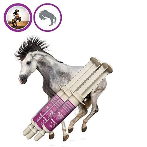 EMMA® Magnesium Pferd I Calm Booster I zur Beruhigung Nerven I L-Tryptophan Aminosäuren Paste I Angst Stress schreckhaftes Pferd I unterstützt Gelassenheit bei nervösen Pferde Pony 3*30ml