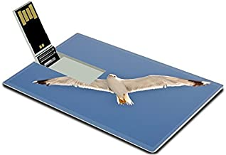 Luxlady 32GB USB Flash Drive 2.0 Memory Stick Credit Card Size White Seagull with Spread Wings Flying Against a Blue Sky Croatia Image 21213867