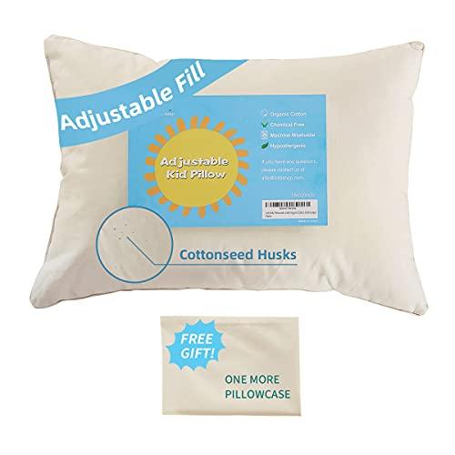 Lofe Organic Standard-Size Pillow with Pillowcase...