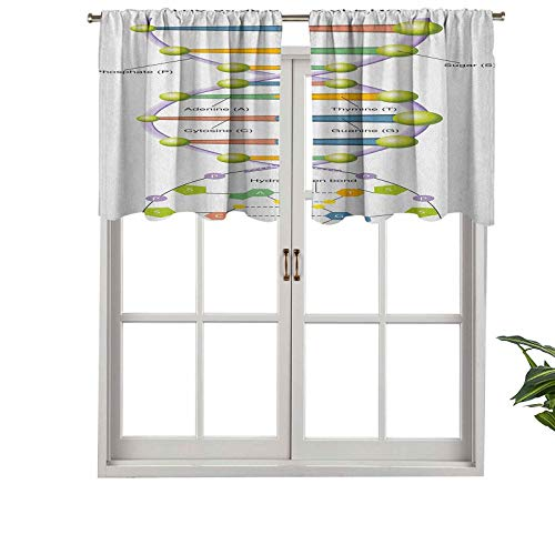 Hiiiman Rod Pocket Curtain Valance Blackout Colorful Structure of DNA Genetic Code Amino Acids Nucleotides Scienti, Set of 2, 42'x24' Window Treatment for Living Room