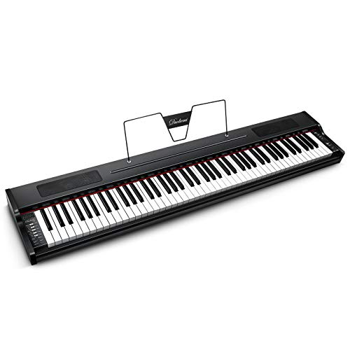 Duoliemi 88 Key Digital Piano for Beginner, 88 Keys Full Size Semi Weighted Keyboard, Portable Electric Piano with Sustain Pedal, Portable Bag, Power Supply