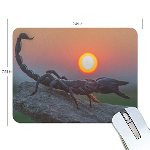 Emperor Scorpion Mouse Pad Gaming Mousepad Anti-Slip Rubber Cool Laptop Computer Mouse Pads for Women Men Kids Desk Office Student, Small 10'x7.5' Mouse Mat