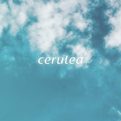 Cerulea