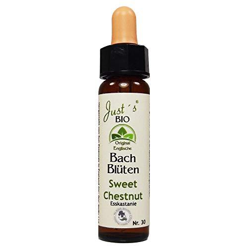 Sweet Chestnut Nr. 30 Just´s Original englische BIO Bachblüten Edelkastanie Blütentherapie für Mensch und