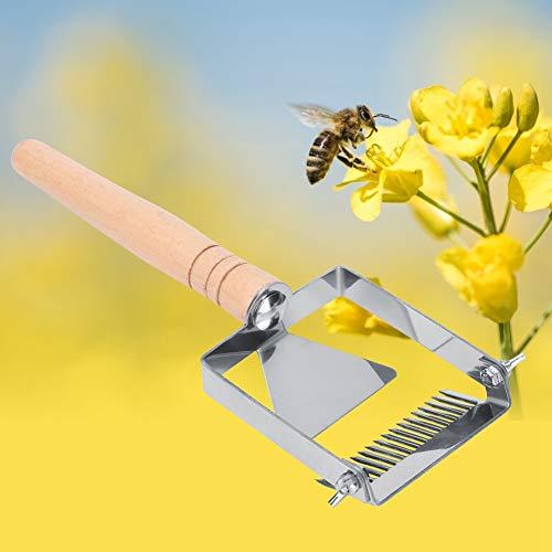 Zhat Extractor de Miel, Tenedor de Miel Práctico Colmena, Extractores Profesionales para Apicultura