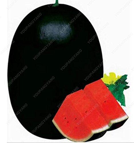 30 semillas piezas de sandía gigante Negro Tyrant King Super dulce sandía cultivar un huerto casero sabrosas semillas de frutas Bonsai envío