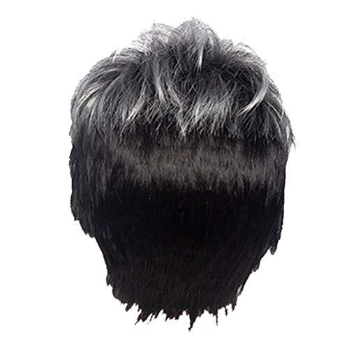 Timagebreze Peluca Recta Corta para Hombre, Peluca SintéTica Negra Gris Ombre para Cabello Masculino, Pelucas de PeluquíN Naturales Realistas, Pelucas