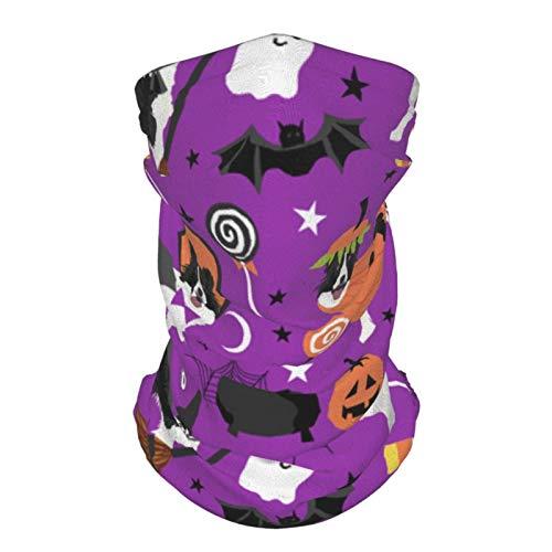 Ccycjasdkfewl Border Collie Dog – Lindo perro, raza de perro, momia brujas, máscara mágica morada, polaina para el cuello, pasamontañas diadema