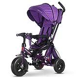 GIFT Kids Trike 2 En 1 Cochecito De Bebé Triciclo para Bebés con Rotación Y Reclinable Asiento De Dos Vías De Implementación,Purple