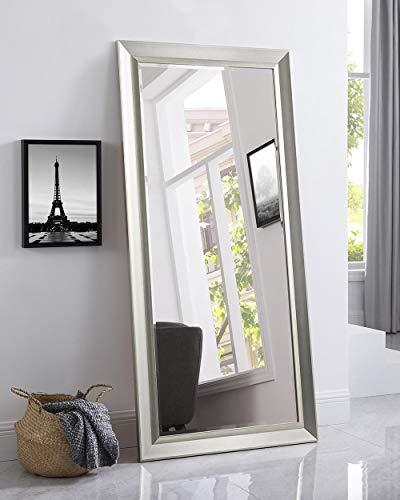 """Naomi Home Framed Bevel Leaner Mirror Champagne/66 x 32"""""""