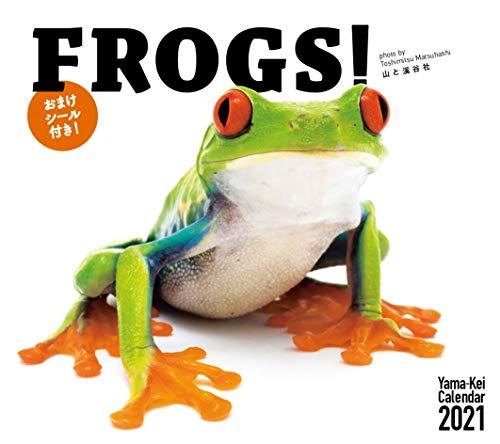 カレンダー2021 FROGS!フロッグス (おまけシール付き) (月めくり・壁掛け) (ヤマケイカレンダー2021)の詳細を見る