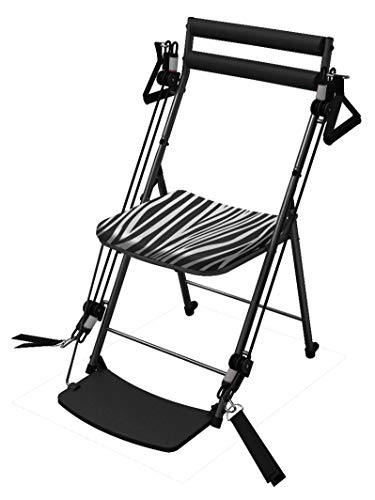 Chair Gym Total Body Workout Equipment All in One Personal Home Exercise Trainer with 3 Level Workout Bands, Eat Fit Nutrition Guide and Instructional Exercises DVDs As Seen on TV