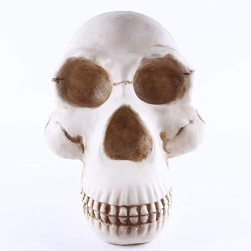 Ybzx Decoración de Escultura de cráneo, Modelo de orangután de cráneo Humano, Recuerdo de artesanía de Resina de Esqueleto Humano prehistórico