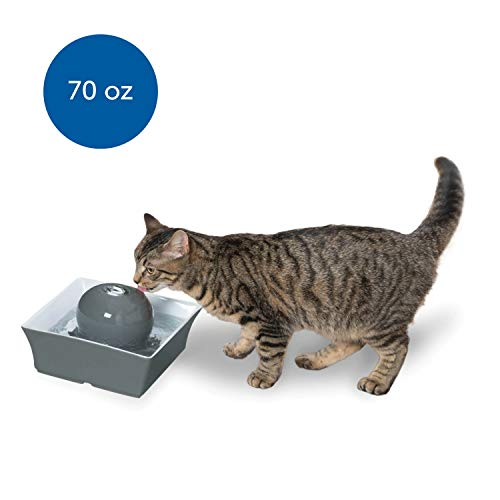 PetSafe Drinkwell Seascape Ceramic Pet Fountain, Filtered Water for Your Cats and Dogs, Gray, 70 oz. Water Capacity