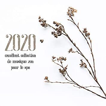 2020 Excellent collection de musique zen pour le spa
