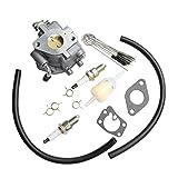 BestPartsCom Carburetor for 303442 303445...