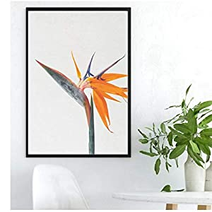 YANGDINGYAO Poster Flower Poster Bird of Paradise Silk Print Home Decor Wall Art Decor-16X24Inno Frame