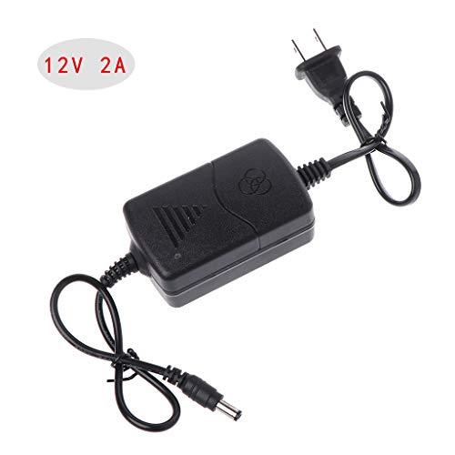 PENG Netzteil AC DC Ladegerät Adapter 12V 2A EU US Stecker für LED Monitor CCTV CCD Überwachungskamera