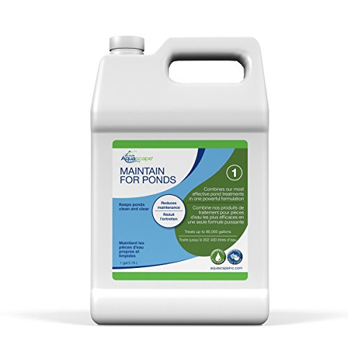 Aquascape MAINTAIN Water Treatment for Koi and Fish Ponds, Easy To Use, Powerful Blend of Beneficial Bacteria, Phosphate Binder, Flocculent, and Detoxifier, 1 gallon / 3.78 L   96060