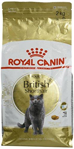 Royal Canin Feline British Shorthair, 1er Pack (1 x 2 kg Beutel) - Katzenfutter