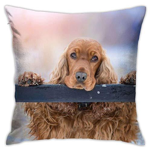 Hdadwy Pillowcase Cocker Spaniel Dog Pet Puppy 18'x18' Decorative Cushion Cover Throw Pillow Cases Protectors
