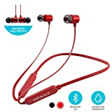 VMPALACE Bluetooth Headphones, Noise Cancelling Headphones with Microphone -...