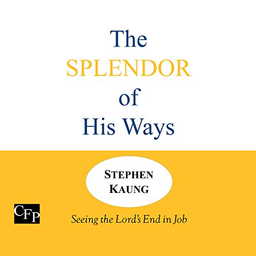 The Splendor of His Ways audiobook cover art