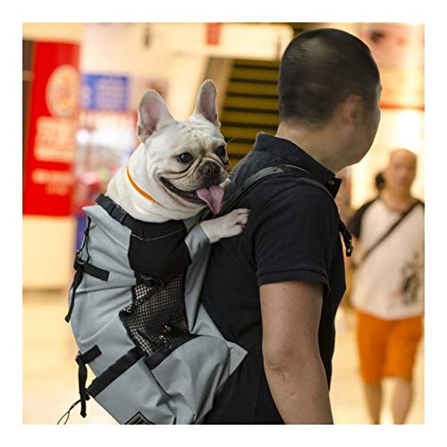 Comfort Breathable Pet Dog Carrier Bag For Large Dogs Golden Retriever Bulldog Backpack Adjustable Big Dog Travel Bags Pets Products (Color : Gray, Size : L)