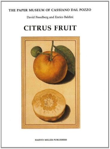Citrus Fruit (Paper Museum of Cassiano Dal Pozzo. Series B, Natural History, Pt. 1, Band 1)