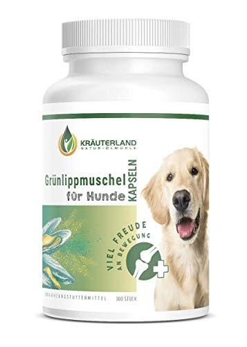 Kräuterland Grünlippmuschel Kapseln Hunde - 300 Stück - 100% pur und rein - Perna Canaliculus Grünlippmuschelextrakt mit Glycosaminoglykane aus Neuseeland - einfache Dosierung