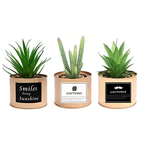 BELLE VOUS Set Mini Piante Artificiali Verdi in Vasi Decorativi Ramati (3pz)- Piante Finte da Interno Design da 10 x 7,5 cm - Piante Grasse Finte per Casa e Ufficio