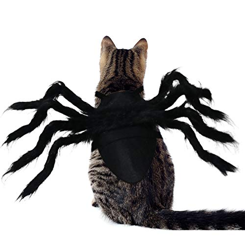 RYPET Cat Spider Costume - Halloween Spider Costume for Cats and Small Dogs Halloween Party Dress Up Festival Decoration Cosplay Pet Costume Small