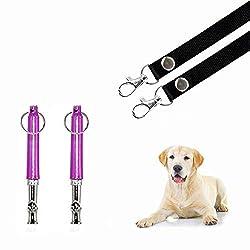 Dog Whistle for Training Dog