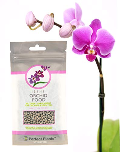 Orchid Food by Perfect Plants - Resealable 5oz. Bag - Slow Release Fertilizer Pellets - Suitable for...