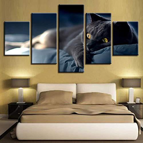 Ysurehom 5 Arte De La Lona Pintura De La Lona Decoración Del Hogar 5 Piezas Gato Gris Perezoso En La Cama Imágenes Modulares Hd Impresiones Animal Poster Living Room Wall Art