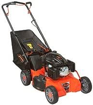 Ariens Company 911173 Push Mower, 21
